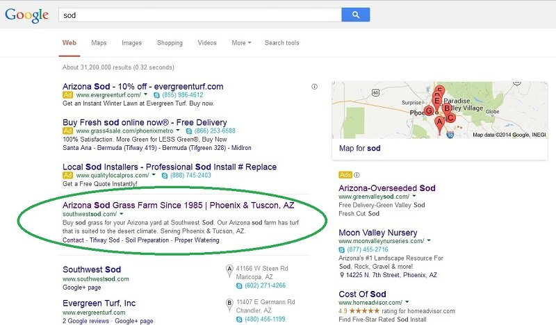 seo client in top position