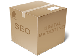 seo box indicating packages available